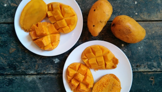 mapleandfitz_mango